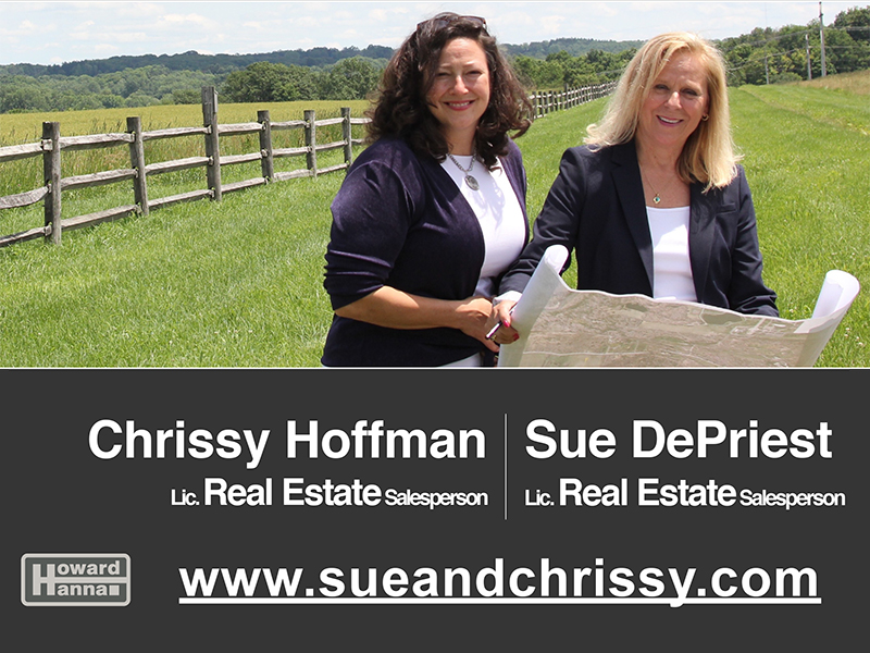 Sue DePriest and Chrissy Hoffman: Licensed Real Estate Salespersons